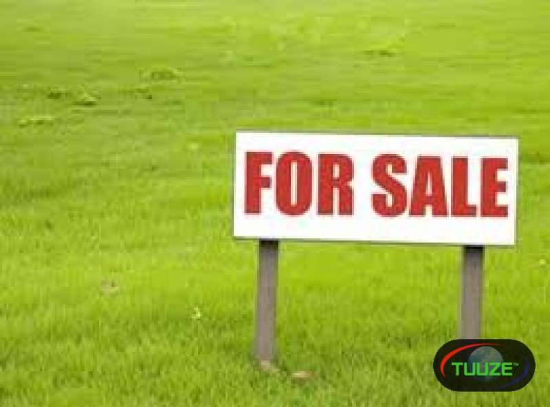100 acres for sale nyeri