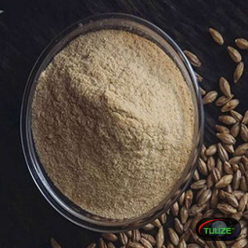 Barley Malt Extract at mahalaxmimaltextract