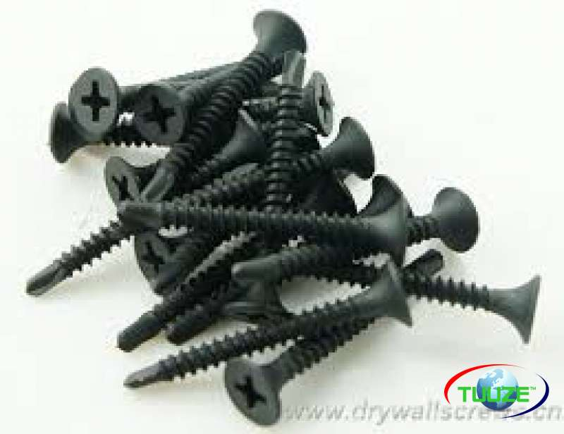 Gypsums screws